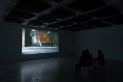 Punto de partida / Point of Departure (Installation Views)
