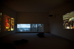 Disorient and other works (Installation Views)