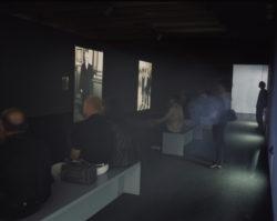 Documenta 11 (Installation Views)