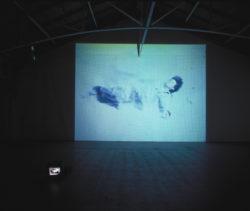 The Gravity in Art (Installation Views)