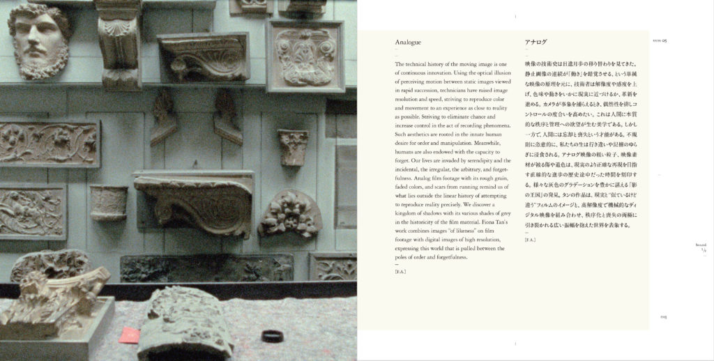 Analogue (Publications)