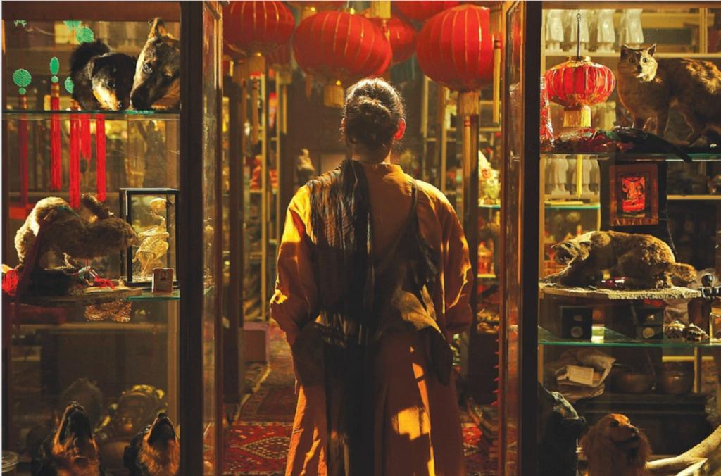 Fiona Tan: Disorient (Installation Views)